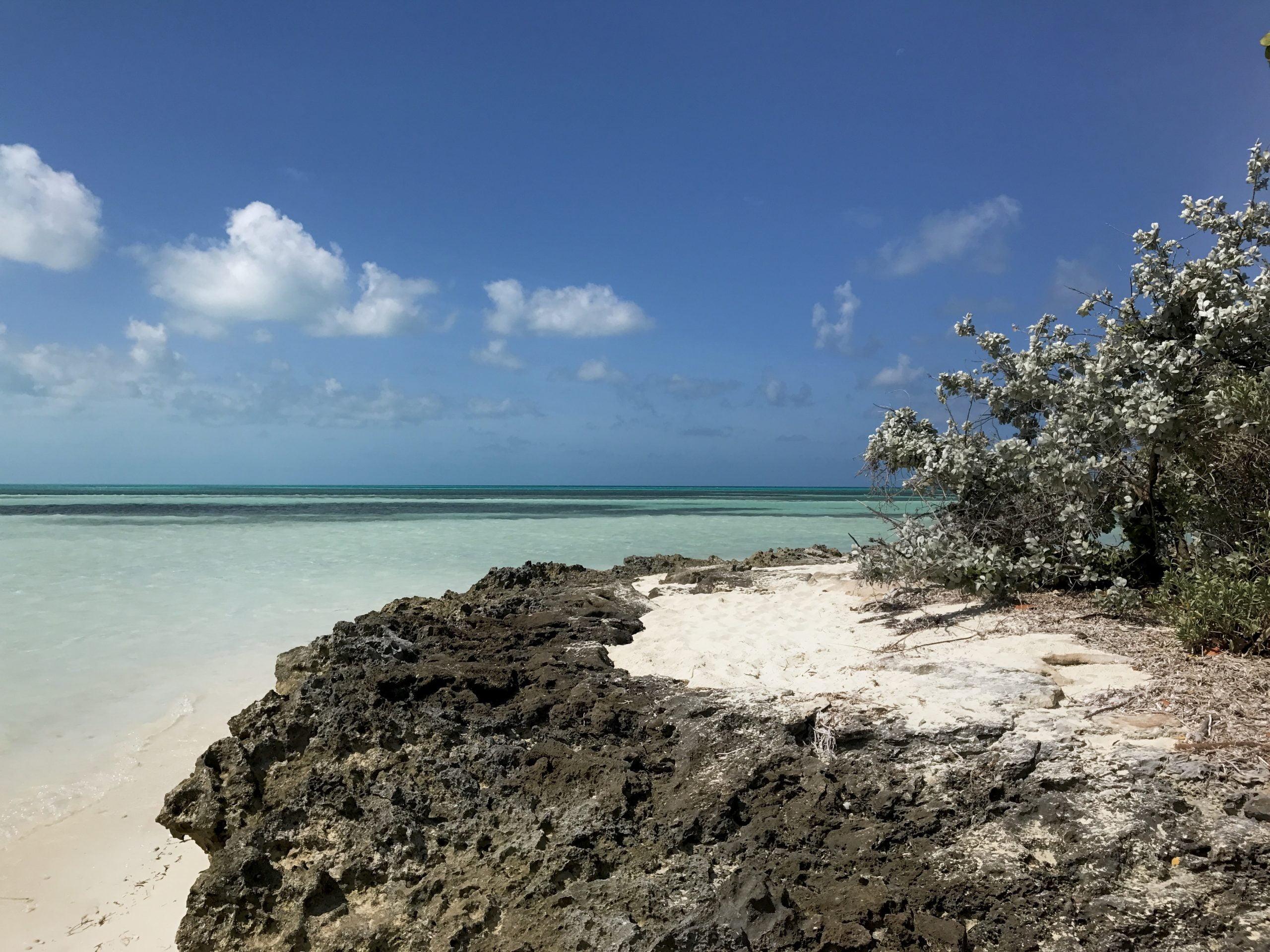 Isola di Coco Cay - Bahamas
