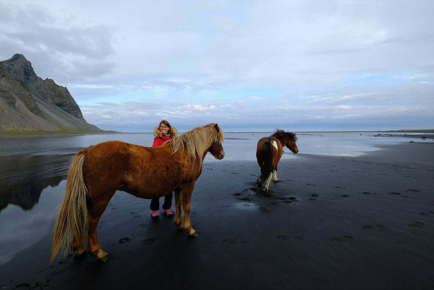 Diario di viaggio: Islanda Day 8