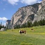 Vallunga: passeggiata tra le montagne della Val Gardena