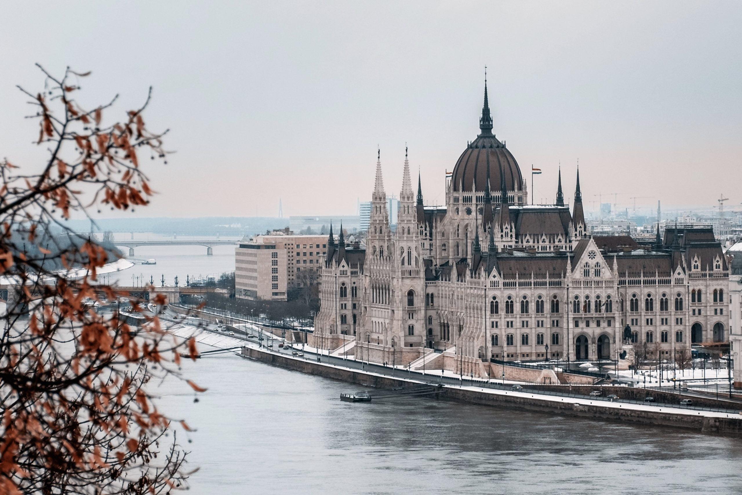 Read more about the article Visitare Budapest con il cane