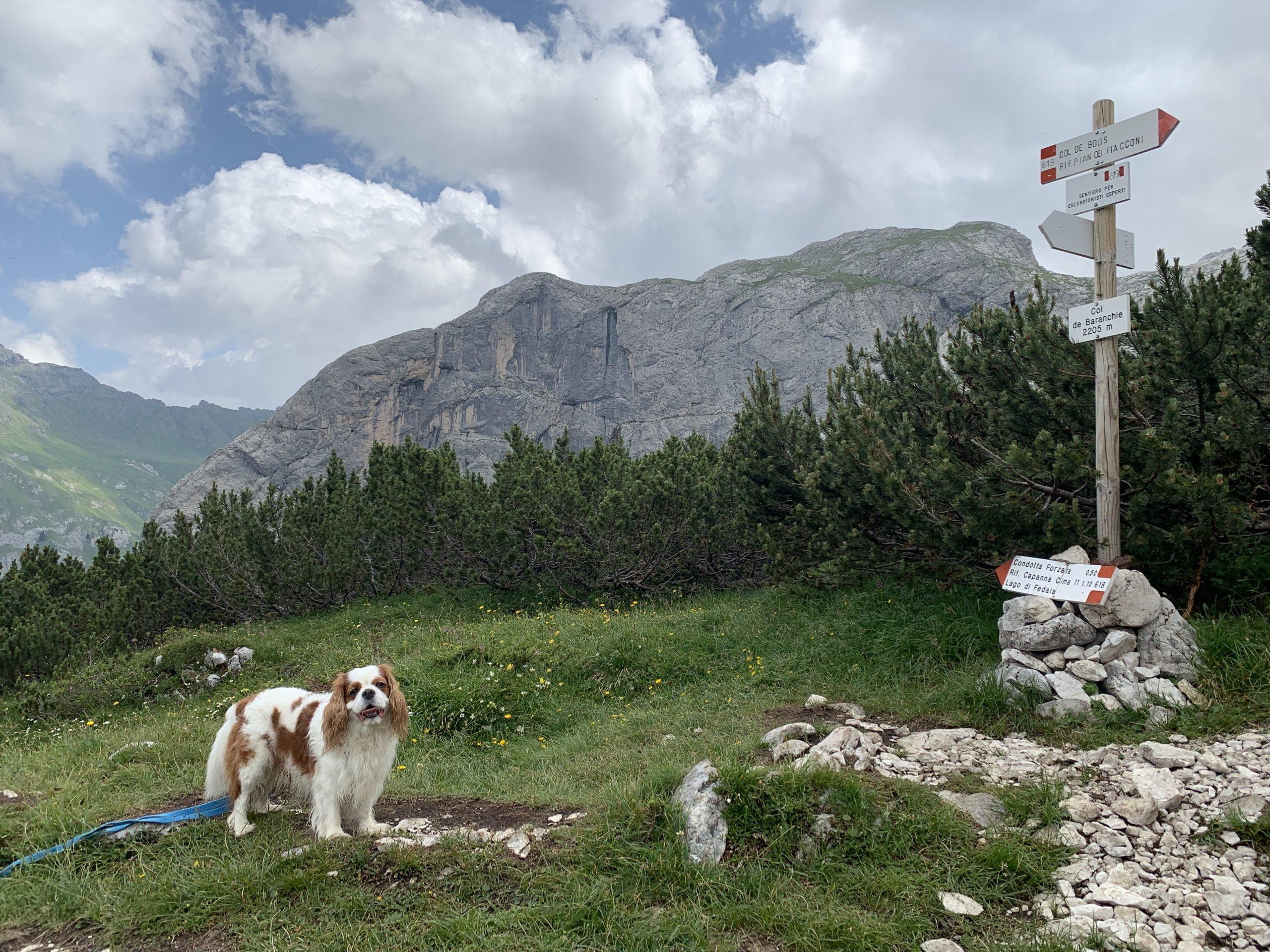 Sentiero 618 Marmitte della Marmolada